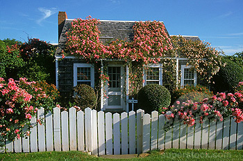 NT Rose Covered Cottage